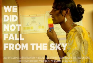 we_did_not_fall_from_the_sky_movie_poster