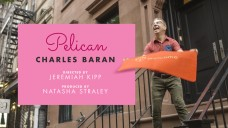 pelican_movie_poster
